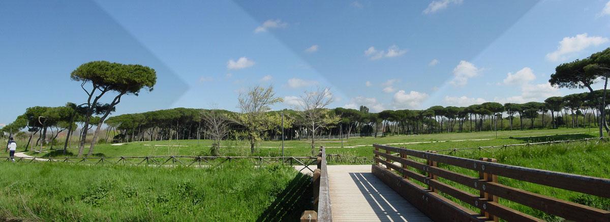Jogging tra storia e natura a Villa Guglielmi<